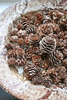 pine cones.....