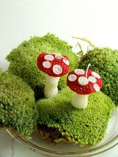 There are blue and purple versions too For Jeannie Toadstool Candles Mushroom Handmade Beeswax Candle Pair Red and White
