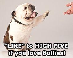 High 5 !
