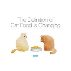 People know what cat food is — it's that dry stuff in a bag, right? Read here about why that is chaninging. Food Change, Meat Diet, Cat Treats, Cat Recipes, Cat Health, Darwin, Cat Food, Pets, Cat Feeding