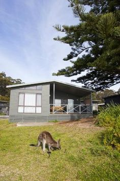 Murramarang Beachfront Nature Resort: Ocean Spa Villa  New South Wales..#Australia.. http://www.tripadvisor.com.au/ShowForum-g255058-i121-New_South_Wales.html