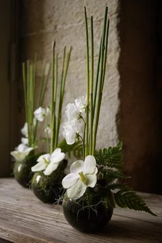 Ikebana white & green - Ikebana white & green How to Have the Bride Bouquet Ikebana Arrangements, Ikebana Flower Arrangement, Modern Flower Arrangements, Wedding Flower Arrangements, Flower Centerpieces, Flower Decorations, Wedding Centerpieces, Wedding Flowers, Wedding Bouquets
