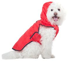 Fashion Pet Red Roll-n-Go Raincoat *** Read more reviews of the product by visiting the link on the image.-It is an affiliate link to Amazon. #PetApparel