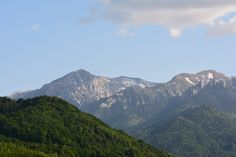 Mountains and forest (by my dad with Nikon D7100)