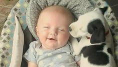 Little Girl And Her Pit Bull Have Been Best Friends Since The Very Beginning