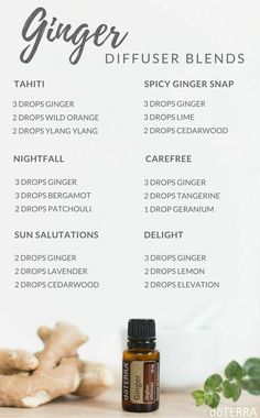Ginger Diffuser Blends
