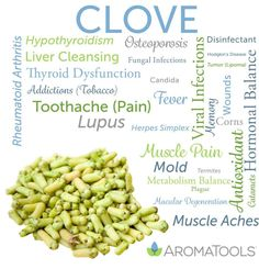 Essential Oil Spotlight: Clove Clove essential oil is steam distilled from the bud and stem of the Myrtaceae. Its spicy, warm, and woody aroma is said to be a mental stimulant. Historically, clove was used for skin infections, d…