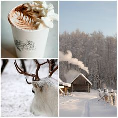 White powdery snow... An tempting hot chocolate with whipped cream...  A white frosty day, Soft white magical reindeer... a winter dream...