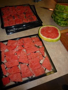 Dehydrated Watermelon - Are We Crazy, Or What?