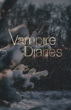 Vampire Diaries Damon, Wallpaper Vampire Diaries, Vampire Diaries Poster, Ian Somerhalder Vampire Diaries, Vampire Daries, Vampire Diaries Quotes, Vampire Diaries The Originals, Delena, Damon Y Elena
