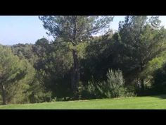 Real Golf de Bendinat auf Mallorca - Teil 2