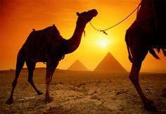 Mi próximo viaje a Egipto
