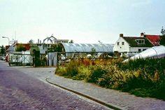 Houtkolk Dokkum (jaartal: 1970 tot 1980) - Foto's SERC