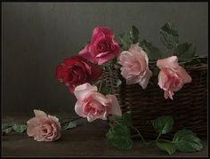 фотонатюрморты с розами: 18 тыс изображений найдено в Яндекс.Картинках