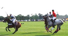 Polo in the Hamptons Westhampton Beach, Hobbies And Interests, East Hampton, Sands, Long Island, Ponies, Google Images, The Hamptons, Equestrian