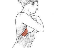 "Target: The serratus anterior Why it works: Put your hands on the sides of your rib cage at your bra strap. You're feeling these small, hardworkin' muscles. When they're strong, they act like little arrows pointing to defined abs. ""The serratus highlights or accents the ribs, making the whole torso appear more defined,"" says trainer James Bowman, owner of Northwest Strength Lab on Bainbridge Island, Washington."