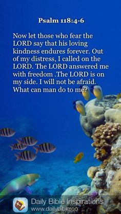 DAILY BIBLE INSPIRATION: Now let those who fear the LORD say that his loving kindness endures forever. Out of my distress, I called on the LORD. The LORD answered me with freedom. The LORD is on my side. I will not be afraid. What can man do to me? ~ {PSALM 118:4-6}