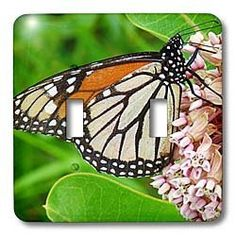 3dRose LLC lsp_10930_2 Monarch Butterfly and Milkweed by Angelandspot, Double Toggle Switch by 3dRose, http://www.amazon.com/dp/B004PRG9OU/ref=cm_sw_r_pi_dp_8j5rrb089KNYY