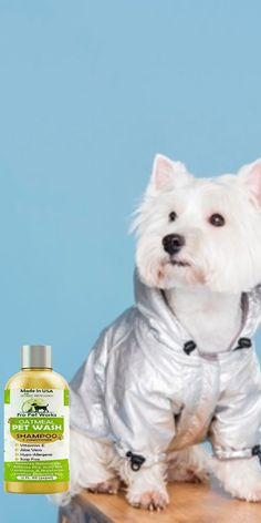 $15.99·Our Oatmeal Dog Shampoo And Conditioner is recommended by Vets and Specially formulated for pets with allergies to food, grass and flea bites. #dogoatmealshampoo #dogshampoo #dogconditioner #dogconditionerdiy #dogbathingshampoo #dogbathing Oatmeal Shampoo, Cat Shampoo, Shampoo And Conditioner, Dog Smells, Flea Treatment, Dog Eyes, Allergies, Sensitive Skin, Biodegradable Products