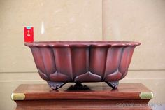 pot à bonsaï de collection pineado por Pascal GRADT