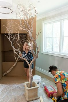 Giant indoor trees! Manzanita branches and cement! Mr. Kate - DIY Indoor Manzanita Trees