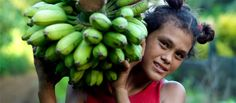 Samoan girl carrying green bananas. Photo: Jane Ussher