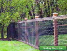 Black coated chain link mounted on wooden posts w/o any framing to frame sections. By Minneapolis, MN Fencing Company. Like the framed sections w/ hog fencing better than chain link but black would disappear very quickly or green w/ vines completely c