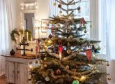 Good Ideas For You | Christmas Trees