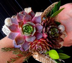 Such a fun idea! Living Succulent Bridal Corsage, Bridal Corsage,Rustic Corsage,Mother of the Bride Corsage,Wedding Succulent. Succulent Corsage, Flower Corsage, Wrist Corsage, Mother Of Bride Corsage, Corsage Wedding, Mother Of The Bride, Prom Corsage, Prom Flowers, Wedding Flowers