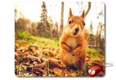 Computer Mouse Pad Mouse Mat Best Mousepad Photo Mouse Pad Funny mouse pad Nature Image Laptop mouse pad online Computer decor Office gifts