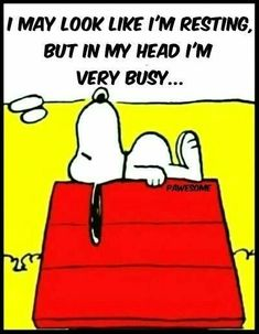 mir geht es auch oft so snoopy im kopf bin ich sehr bschäftigt mit vielen gedan… I am also often so snoopy in the head I am very busy with many thoughts … Peanuts Cartoon, Peanuts Snoopy, Peanuts Comics, Caricature, Cute Quotes, Funny Quotes, Snoopy Quotes, Peanuts Quotes, Charlie Brown And Snoopy