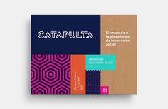 https://www.behance.net/gallery/24935129/Catapulta-Fest?utm_medium=email