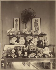 1892. Harvard Psychological Laboratory
