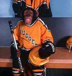 Hockey Chimp.