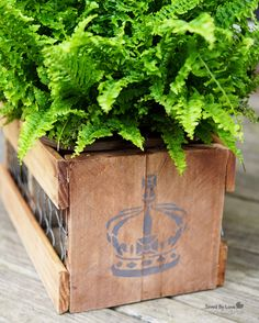 How to make a stenciled vintage crate from reclaimed wood and chicken wire @savedbyloves @Plaid Crafts