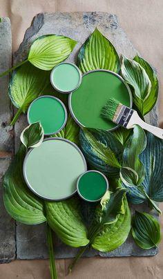 Paint Color Palettes, Colour Pallete, Colour Schemes, Paint Colors For Home, House Colors, Wall Colors, Green Colors, Colours, Painted Pots