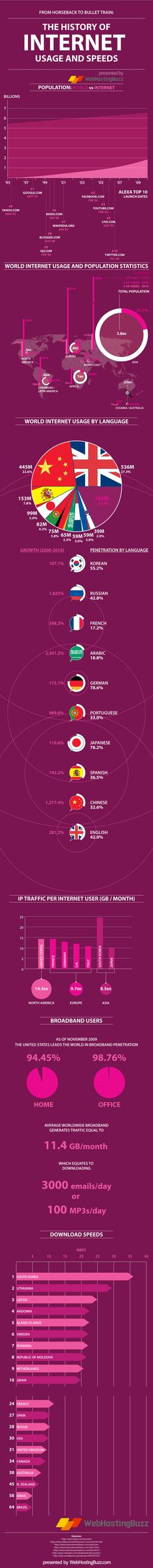 The Internet usage infographic