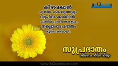 22 Best Malayalam Quotes Images Malayalam Quotes Inspirational