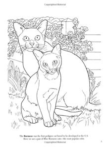 dover coloring book the cat lovers google search