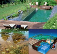Eliminate the Weeds of Your Garden Natural Swimming Ponds, Swimming Pool Landscaping, Small Swimming Pools, Backyard Landscaping, Backyard Water Feature, Ponds Backyard, Garden Pond Design, Dream Pools, Cool Pools