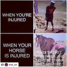 So much truth! I cut the tip of my finger off once & never went to a dr, but if my horse might be hurt....!