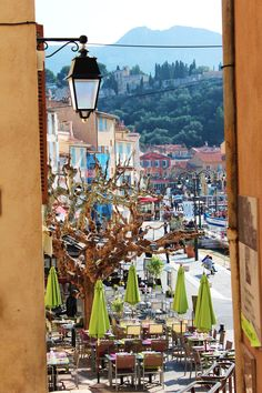 The harbour of Cassis. (A. Carman)