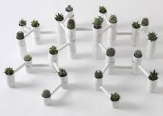 New curated project, uniting more than 15 Russian product designers, explores living with nature in the urban settings and aims at bringing back nature into the everyday experience of city dwellers.