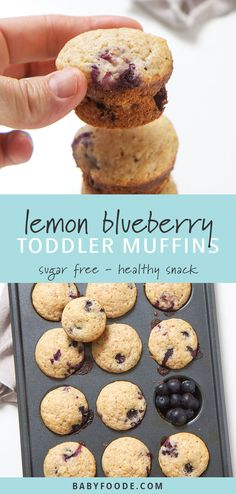 Healthy Snacks These healthy blueberry and lemon muffins are the perfect summer breakfast, snack or even a treat for your toddler or big kid! They're easy, delicious, healthy, and most importantly completely make ahead. Mini Blueberry Muffins, Lemon Muffins, Mini Muffins, Blueberry Breakfast, Breakfast Snacks, Blueberry Drinks, Healthy Toddler Breakfast, Sugar Free Muffins, Sugar Free Breakfast