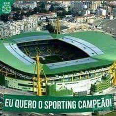 Eu quero of Sporting campeão