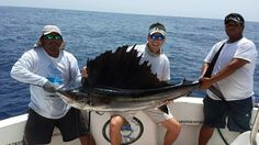 Sailfishing Cancun  #sportfishingcancun #fishingcancun #kianahssportfishing