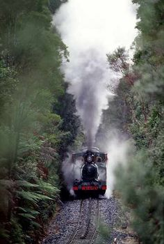 Take the train through the Wilderness. Abt train, Queenstown to Strahan, Tasmania Western Australia, Australia Travel, Queensland Australia, Tasmania Travel, Holiday Places, Train Travel, The Great Outdoors, Wilderness, Places To See