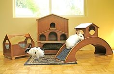 indoor rabbit housing - love the bridge and so do bunnies Bunny Cages, Rabbit Cages, House Rabbit, Rabbit Toys, Pet Rabbit, Rabbit Life, Baby Bunnies, Cute Bunny, Bunny Rabbits