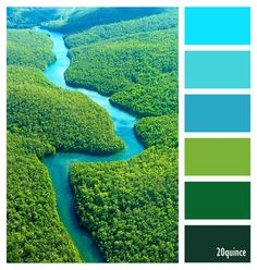 COLOR PALETTE ~ BEAUTIFUL COLORS OF NATURE TONES  ~~*~~