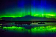 Northern Lights | Christopher Martin Photography